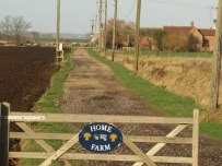 Farm_Gate_And_Track_-_geograph.org.uk_-_649749